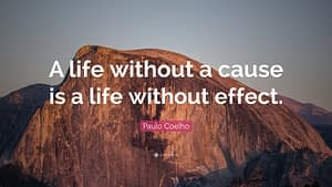 """""""A life without a cause is a life without effect."""""""