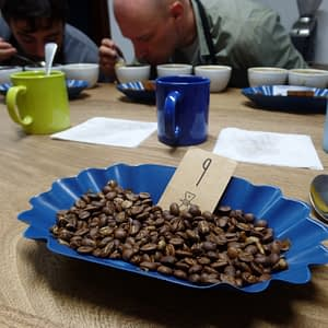 Only the best of coffee beans make the cut!