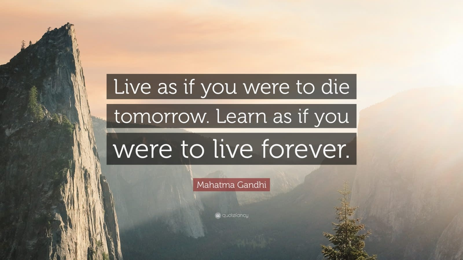 Ghandi-learn-forever-quote