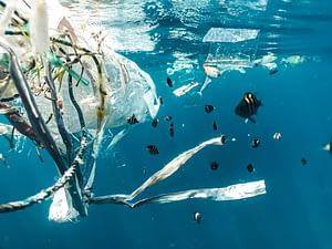 photo of marine plastic pollution