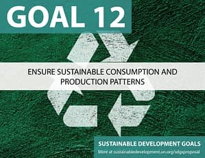 SDG Goal 12 is responsible consumption from United Nations Sustainable Development Goals